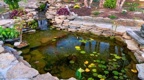 Installing a Backyard Water Feature: Ponds & Waterfalls
