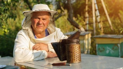 Beekeeping Made Easy: A Helpful Guide