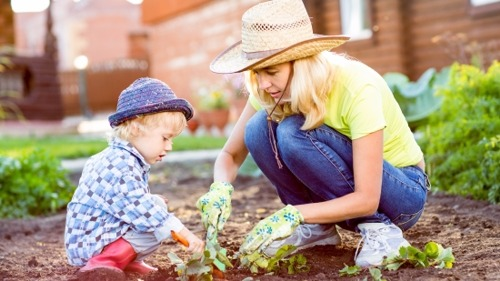 Incredible Tips for Making the Most Out of Your Small Garden