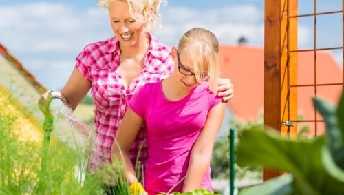 Keep Your Backyard Garden Producing All Season with Succession Planting